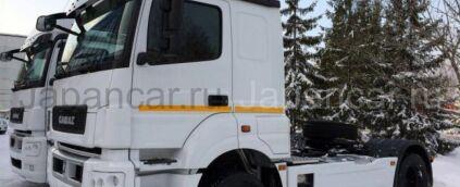 Тягач КАМАЗ 5490-009-87(S5) 2017 года в Путилково